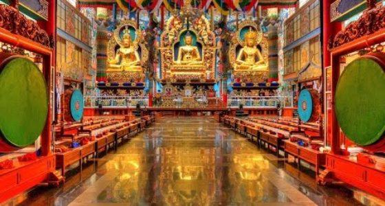 Coorg -Tibetan BylakkupeTheeBeauties